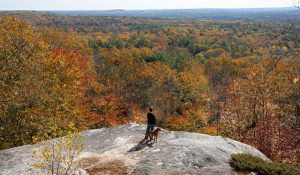 dog and owner looking out from bradbury mountain